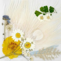 Taeyang – White night – 3rd...