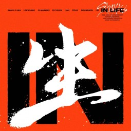 Stray Kids - IN生 (IN LIFE)...